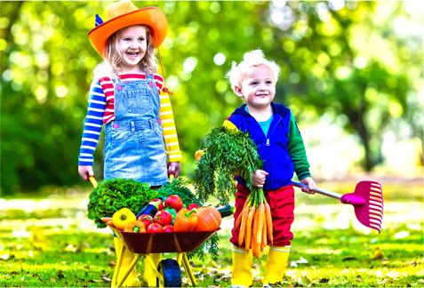 Exploring Sustainable Food With Your Children - The Fun Way